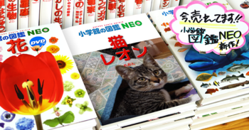レオン図鑑2.png